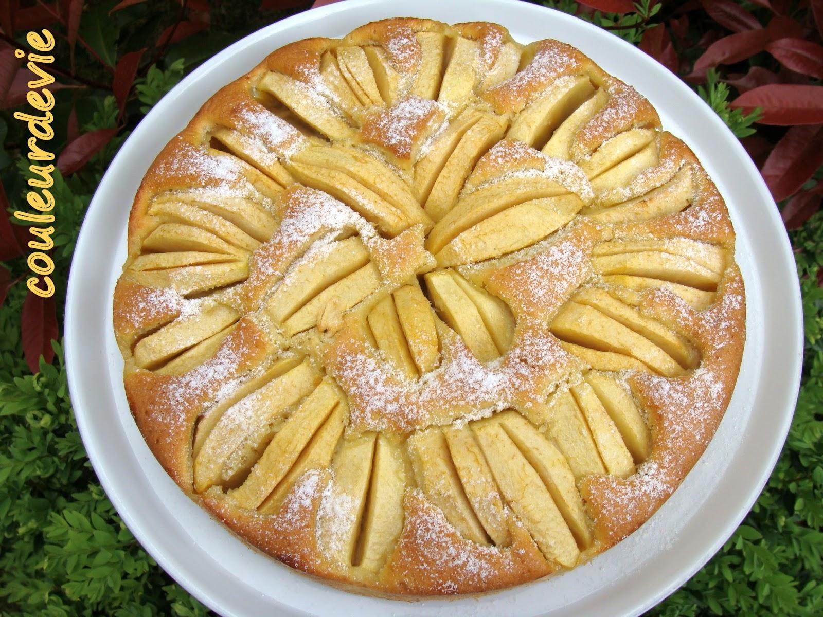 Gateau avec morceaux pommes